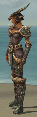 Warrior Charr Hide Armor F gray side