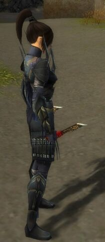 File:Zenmai Mysterious Armor F gray side.jpg