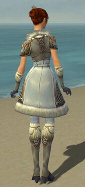 Elementalist Norn Armor F gray back