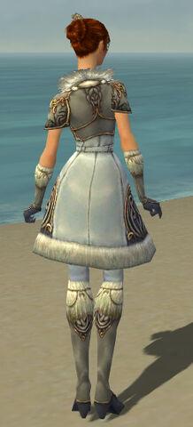 File:Elementalist Norn Armor F gray back.jpg