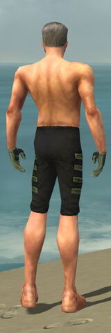 File:Mesmer Elite Kurzick Armor M gray arms legs back.jpg