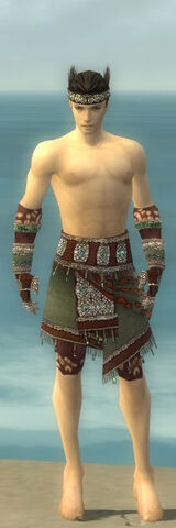 File:Ritualist Elite Exotic Armor M gray arms legs front.jpg