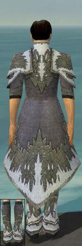 File:Elementalist Iceforged Armor M gray chest feet back.jpg