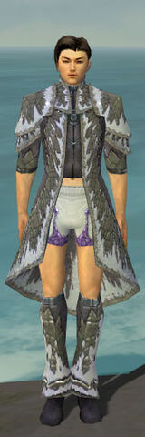 File:Elementalist Iceforged Armor M gray chest feet front.jpg
