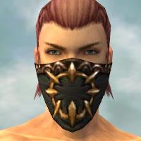 File:Ranger Sunspear Armor M gray head front.jpg