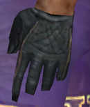File:Mesmer Elite Noble Armor M gloves.jpg