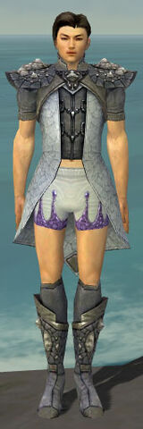 File:Elementalist Stoneforged Armor M gray chest feet front.jpg