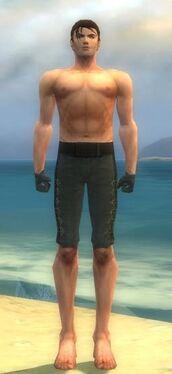 Mesmer Elite Enchanter Armor M gray arms legs front
