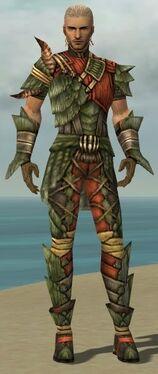 Ranger Elite Drakescale Armor M gray front