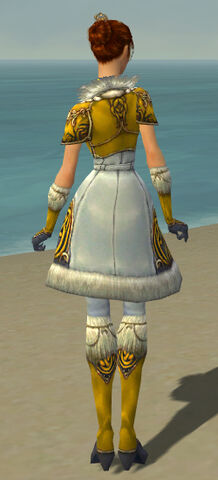 File:Elementalist Norn Armor F dyed back.jpg