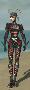 Necromancer Necrotic Armor F dyed front