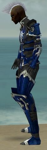 File:Necromancer Tyrian Armor M dyed side.jpg