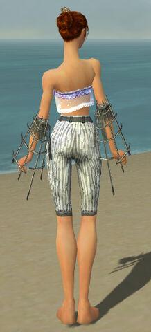 File:Elementalist Primeval Armor F gray arms legs back.jpg