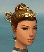 File:Paragon Istani Armor F gray earrings.jpg