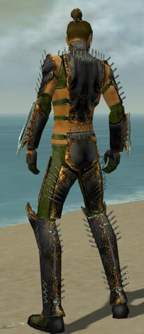 File:Assassin Exotic Armor M dyed back.jpg