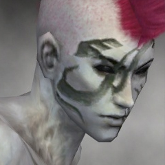 File:Necromancer Luxon Armor M gray head right.jpg