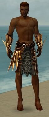 Ranger Elite Sunspear Armor M gray arms legs front