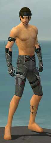 File:Assassin Canthan Armor M gray arms legs front.jpg