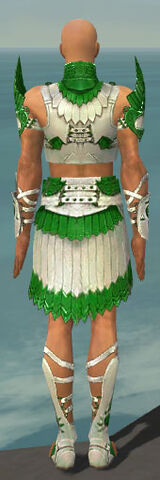 File:Paragon Sunspear Armor M dyed back.jpg