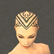 File:Monk Asuran Armor F gray head front.jpg