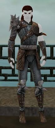 File:RH-Hero-Arrancar Armor.jpg