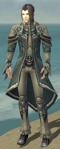 File:Elementalist Asuran Armor M gray front.jpg