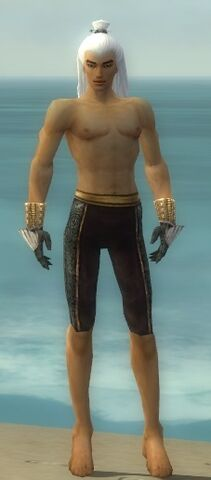 File:Elementalist Elite Sunspear Armor M gray arms legs front.jpg