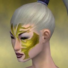 File:Necromancer Elite Luxon Armor F dyed head left.jpg