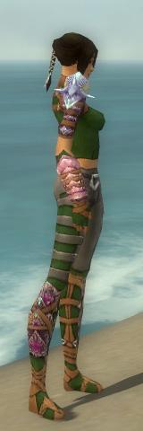 File:Ranger Drakescale Armor F dyed side.jpg
