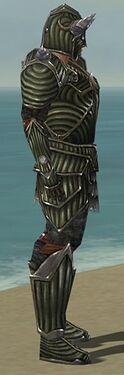 Warrior Wyvern Armor M gray side