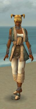 Monk Vabbian Armor F gray front