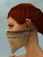 File:Ranger Asuran Armor F gray head side.jpg