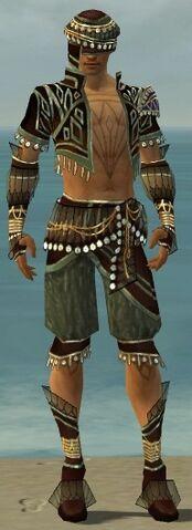 File:Ritualist Vabbian Armor M gray front.jpg