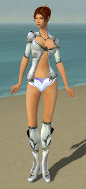Elementalist Ascalon Armor F gray chest feet front