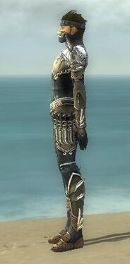 Assassin Asuran Armor M gray side