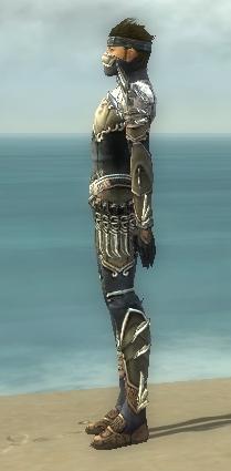File:Assassin Asuran Armor M gray side.jpg