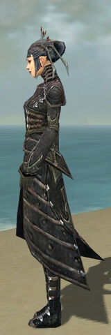 File:Necromancer Elite Cultist Armor F gray side.jpg
