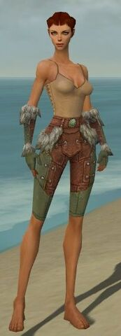 File:Ranger Fur-Lined Armor F gray arms legs front.jpg