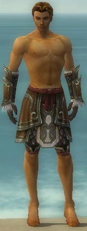 File:Ranger Elite Canthan Armor M gray arms legs front.jpg