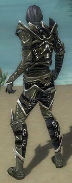 Necromancer Elite Profane Armor M gray back