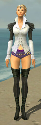 File:Mesmer Ascalon Armor F gray chest feet front.jpg