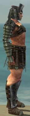 Warrior Elite Gladiator Armor M gray side