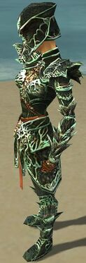 Warrior Elite Luxon Armor F dyed side