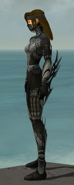 Assassin Vabbian Armor F gray side