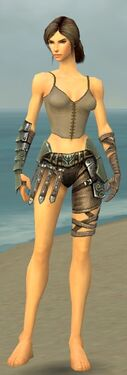 Warrior Elite Gladiator Armor F gray arms legs front