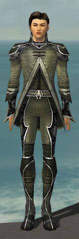 File:Elementalist Shing Jea Armor M gray front.jpg