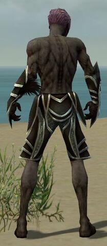 File:Necromancer Elite Sunspear Armor M gray arms legs back.jpg