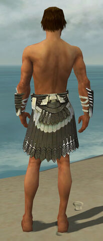File:Paragon Elite Sunspear Armor M gray arms legs back.jpg