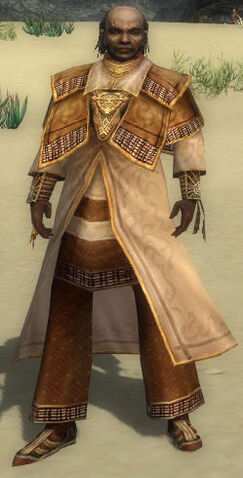 File:Dunkoro Armor DajkahInlet Front.jpg