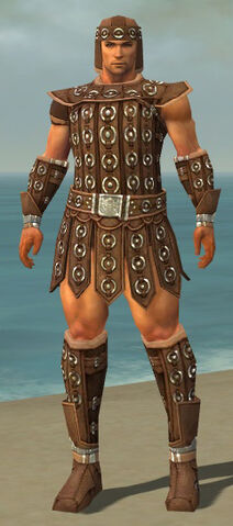 File:Warrior Ascalon Armor M dyed front.jpg
